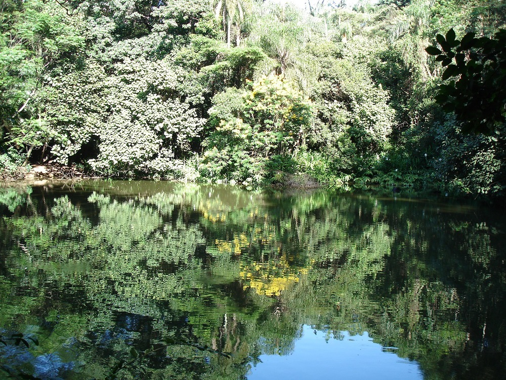 Burle Marx Lake