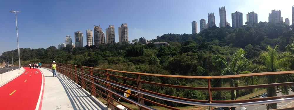Parque Burle Marx visto de cima da Ponte Laguna