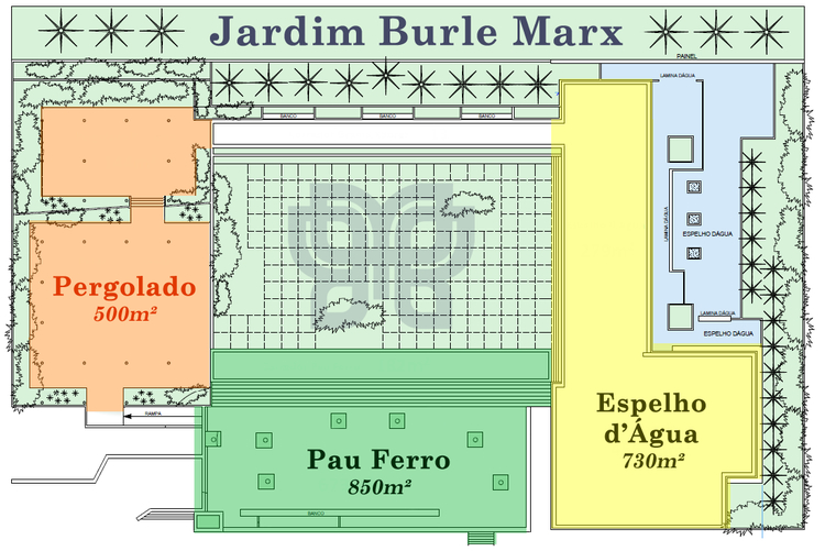 JD. BURLE MARX (planta).jpg