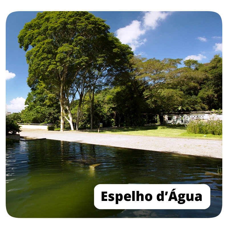ESPELHO DAGUA.png