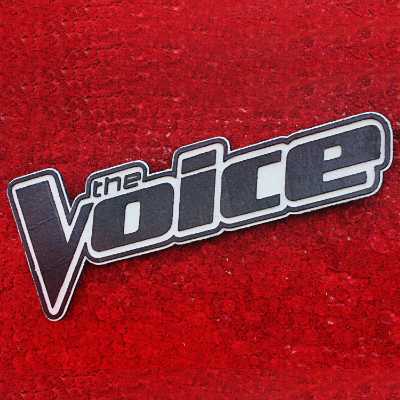 THE VOICE 2014