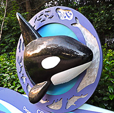 Sea World Orlando 2