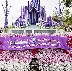 Disney 60th Anniversary