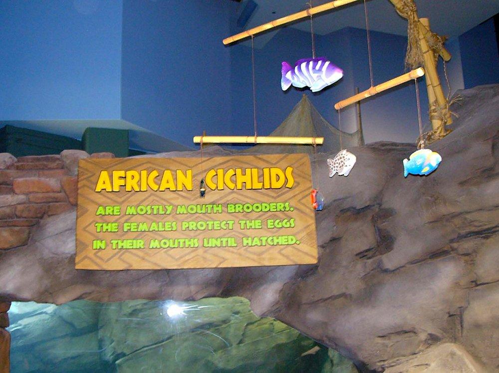 fl-te-georgia aquarium_03.jpg
