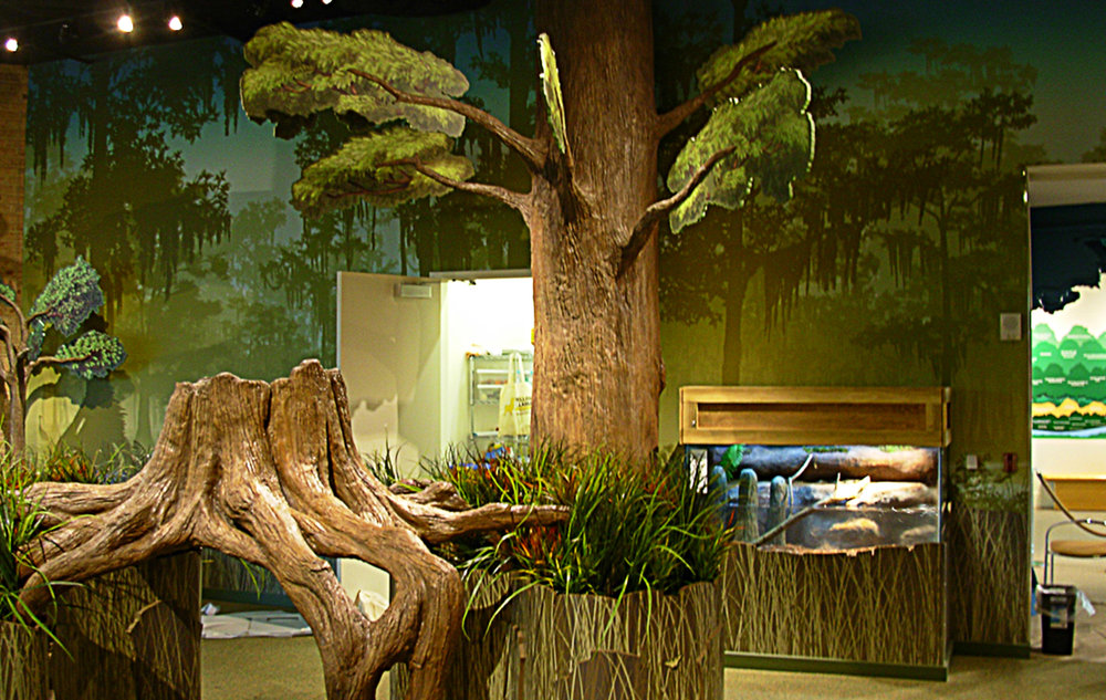 fl-exhibitions-fernbank 1.jpg