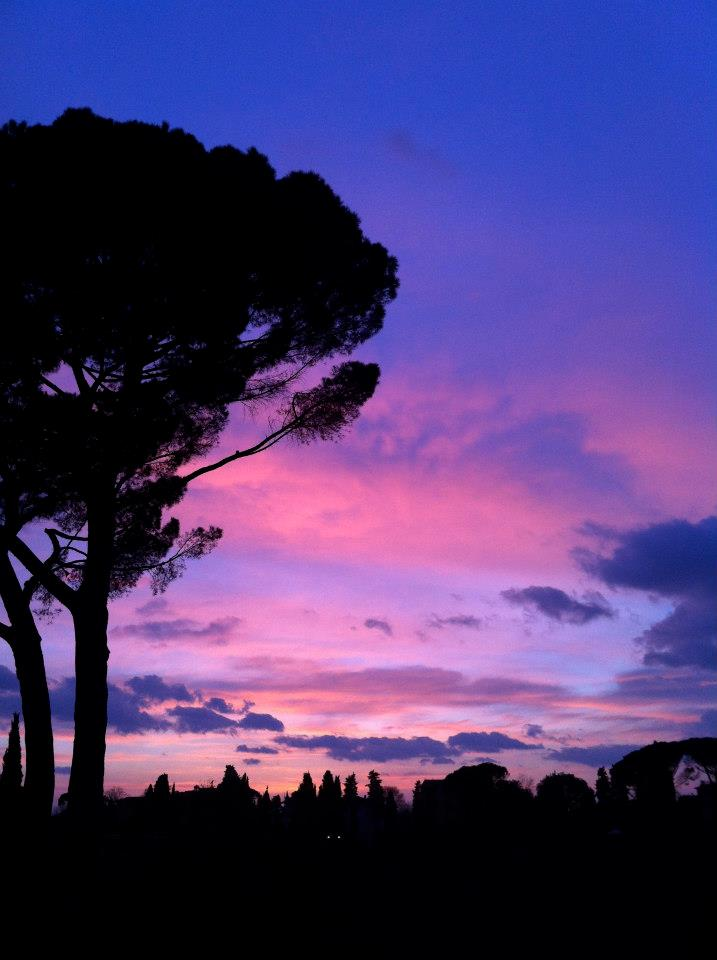 Florence 5.jpg