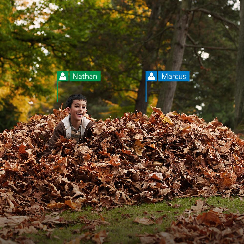 IG_OfficeSocial_November_TagsIRL_Leaves.png