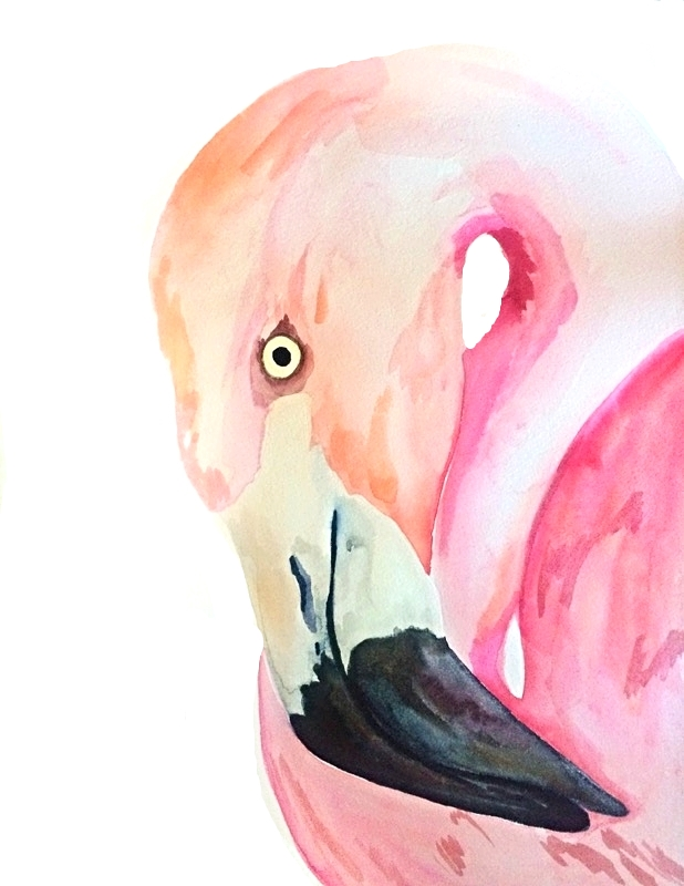 Flamingo, 18 x 12'', $200