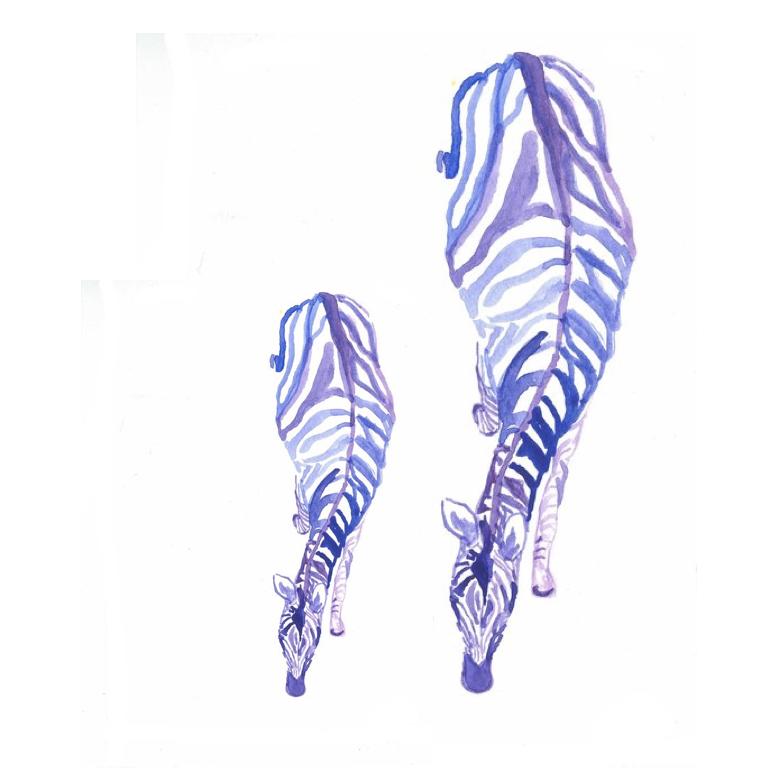 baby zebra.001.jpeg