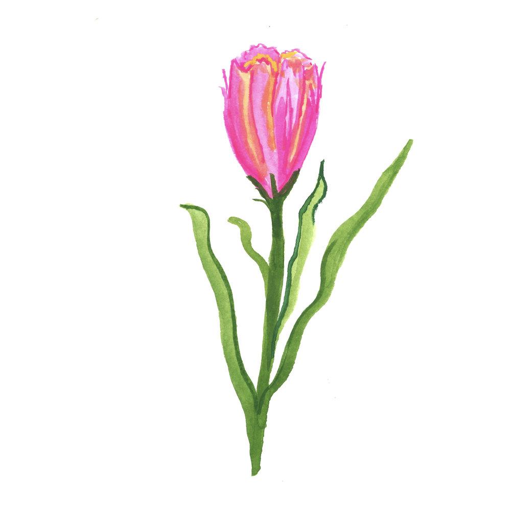 Flowers.005.jpeg