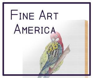 Fine Art America Shop - mjposton art