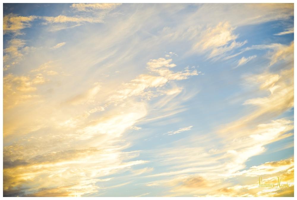 summerhousephotography.jpg