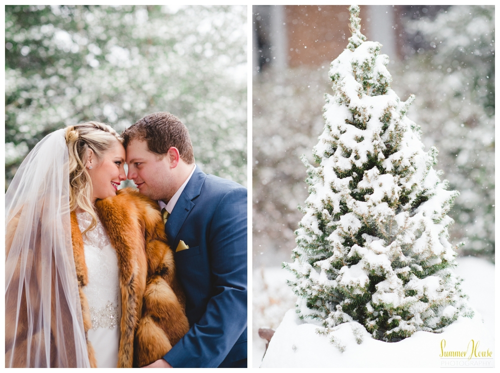 snow wedding winter bride pennsylvania