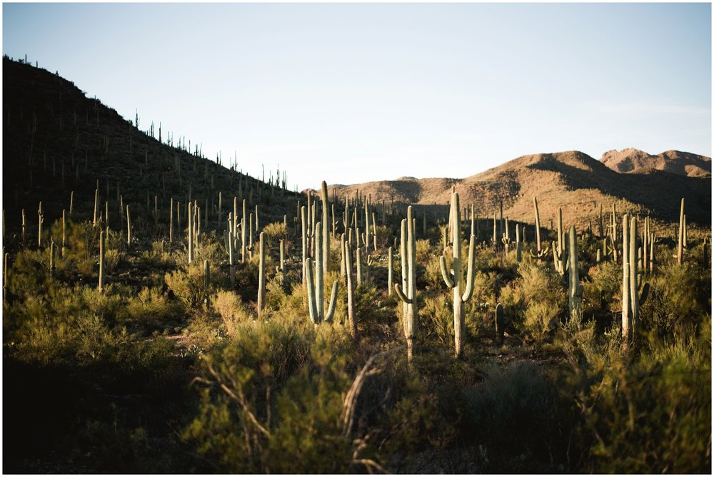tucson arizona landscape photography