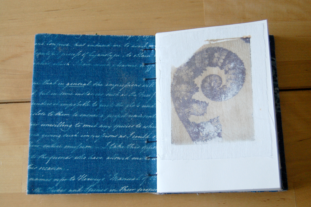"cyanotype text on cotton. from anna atkins ""cyanotypes of british and foreign ferns""  1851.  polaroid transfer print on cotton."