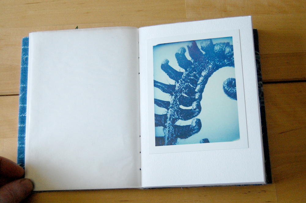 originals are black and white,  the beautiful blue cast comes from the polaroid camera/fuji film.