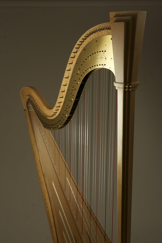 Harp Lessons Rock Island Il Erin Freund