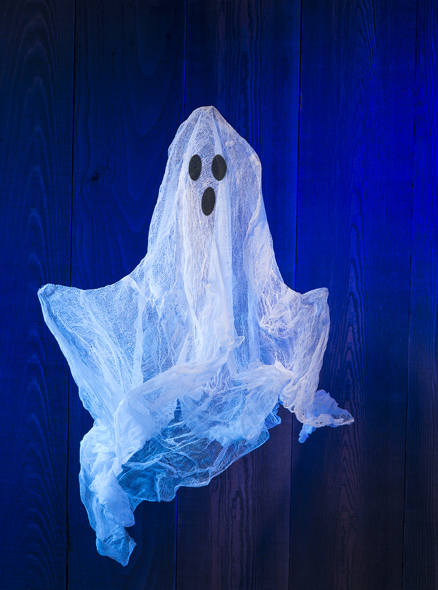 Cheesecloth Ghost.jpg