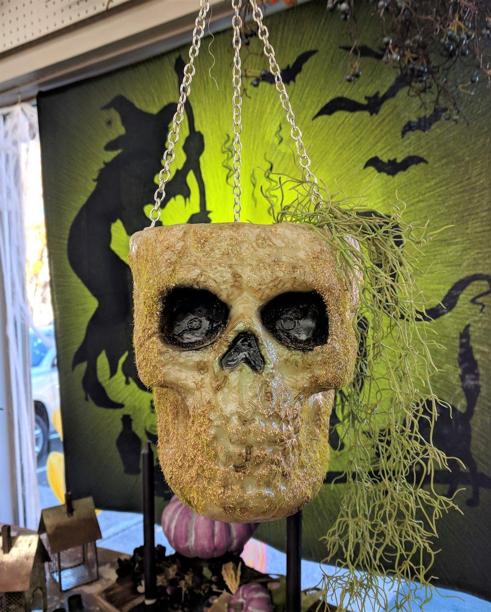 Skull Planter.jpg