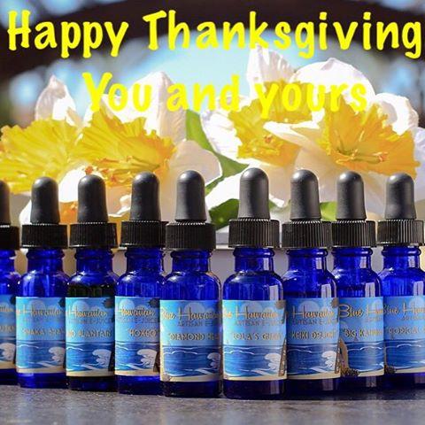 We at Blue Hawaiian Artisan want to wish you and your family a happy thanksgiving. We are thankful for all of your support.  #vapecommunity #vapeclouds #bluehawaiianartisan #vapeohana #ohana #westcoastvaper #vape #vapelyfe  #vapelikeaboss #vaping #vapor #vapestegram #vapefam #vapeporn #vapecommunity #vapeshop #calivapers #instafollow  #vapepics #ejuice #vape #ejuice #vapelyfe #vapedaily #vapegram #handcheck #happythankgiving