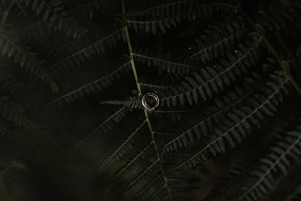 forest_kelinda-84.jpg