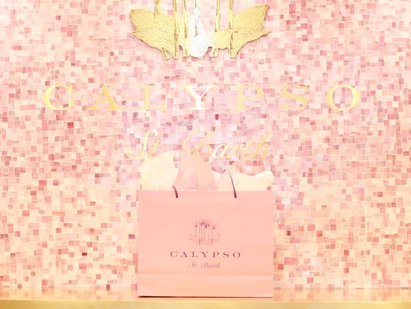 Calypso-Pink-Bag-Moment.jpg