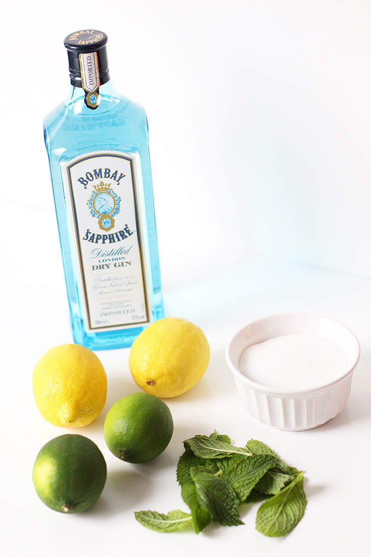 Gin Mint Julep Recipe