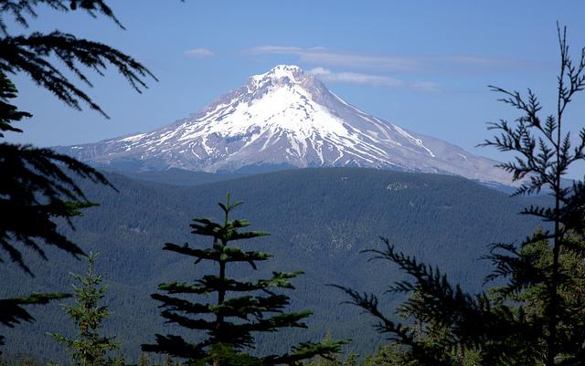 Photo courtesy ofSmithflvia Wikipedia Commons