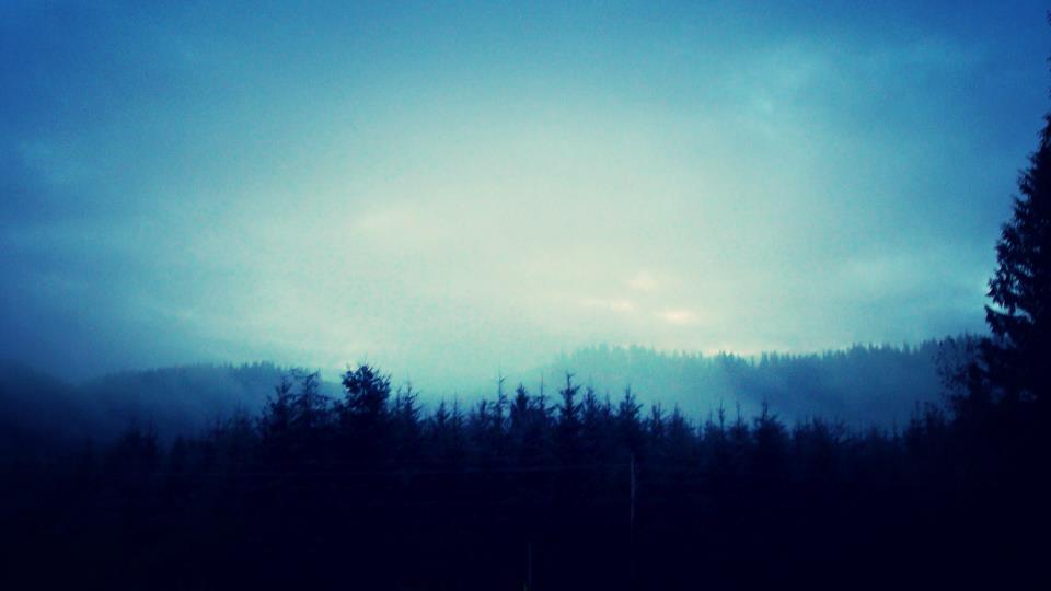 Early morning in Mist, Oregon.