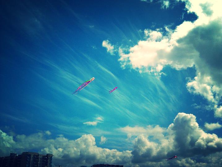 kites seaside oregon.jpg