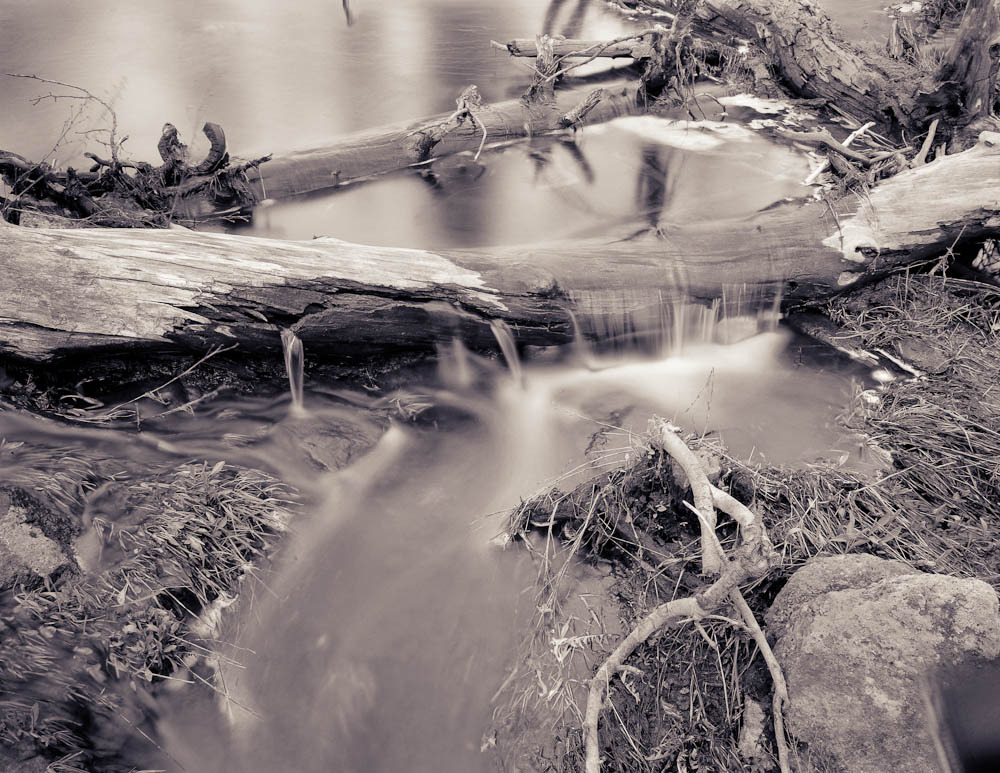 Intermittent Stream From Winter Runoff, Island Park, Idaho, 2002