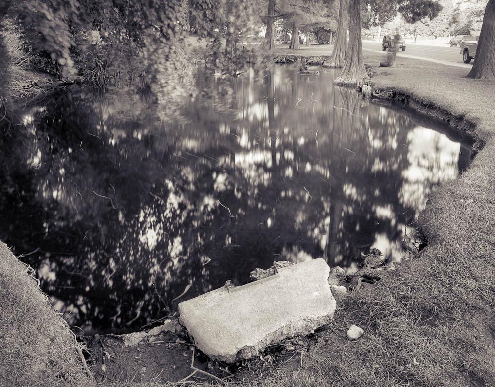 BYU Botany Pond, BYU, Provo, Utah, 2006