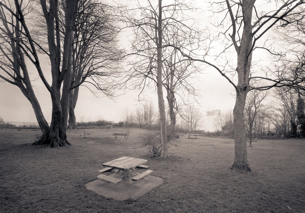 Picnic Bench, Magnolia Park, Seattle, Washington, 2005