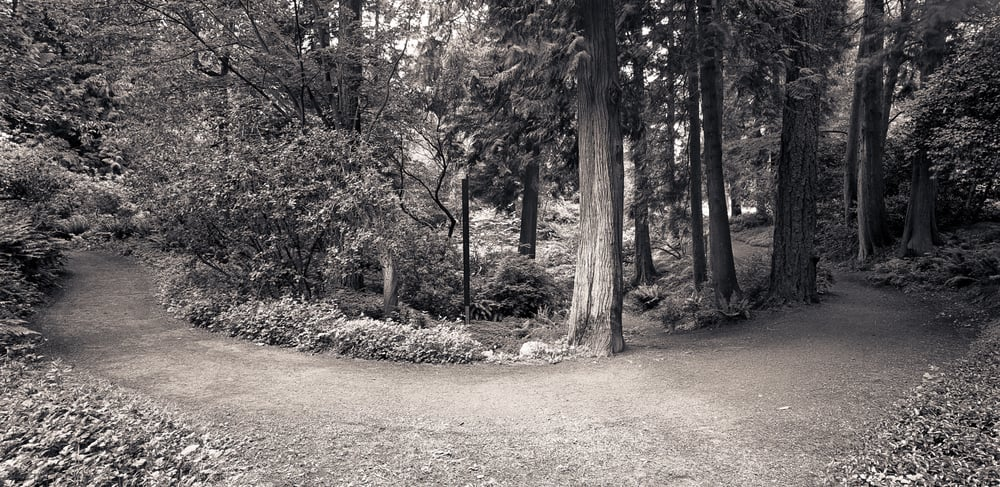 Washington Arboretum, Seattle, Washington, 2005