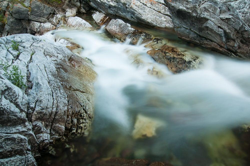 Cameron Creek, Waterton Lakes, National Park, Alberta 2015