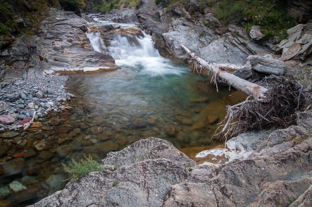 Blakiston Creek, Waterton Lakes National Park, Alberta 2015