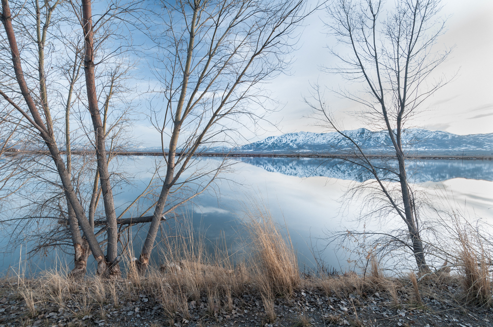 Cutler Marsh Near Benson Marina, Cache Valley, Utah, 2016