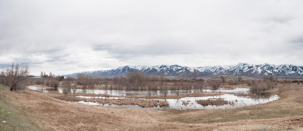 Bear River, Amalga, Utah, 2016