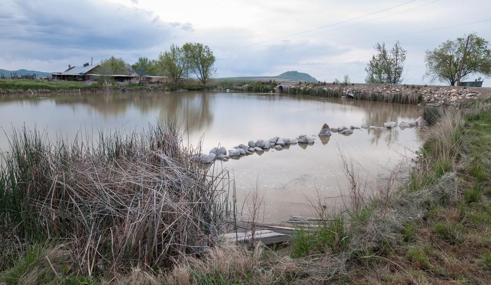 Clay Slough, Utah, 2016