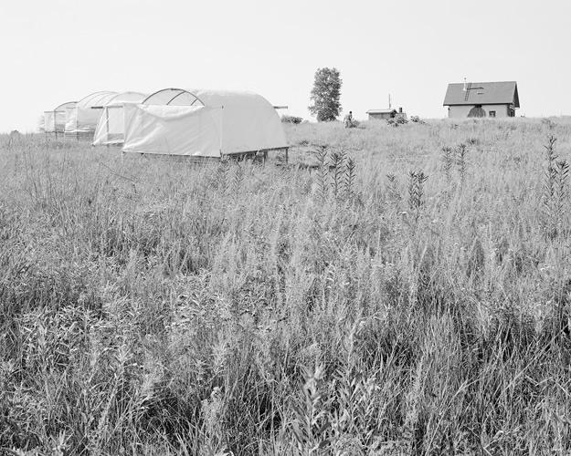 Sweet Love Farm, Jefferson County