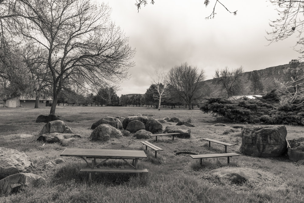 Picnic Area and Firepit, Niagara Springs State Park, Idaho 2019