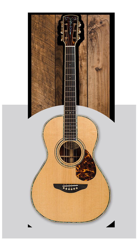 Acoustic Web Button 2.png