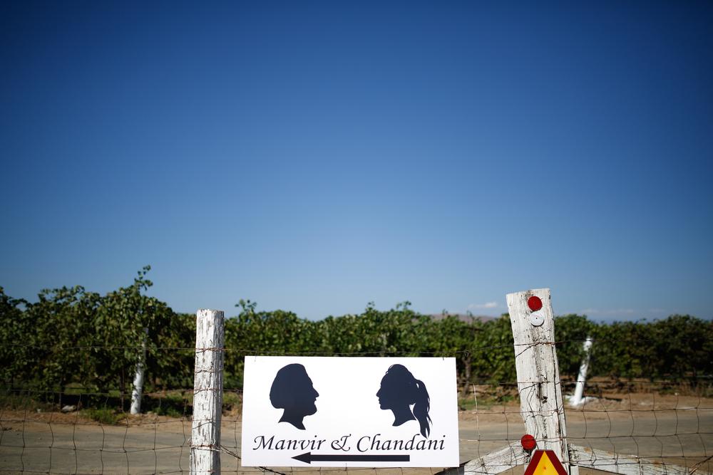 Chandni & Manvir 0001.jpg