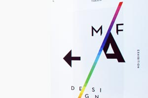 MFA Design show   2014