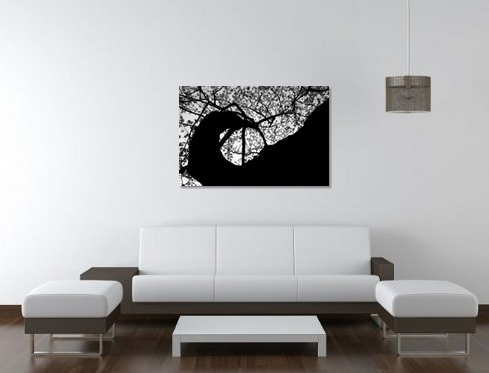 Cherry Blossom - Canvas