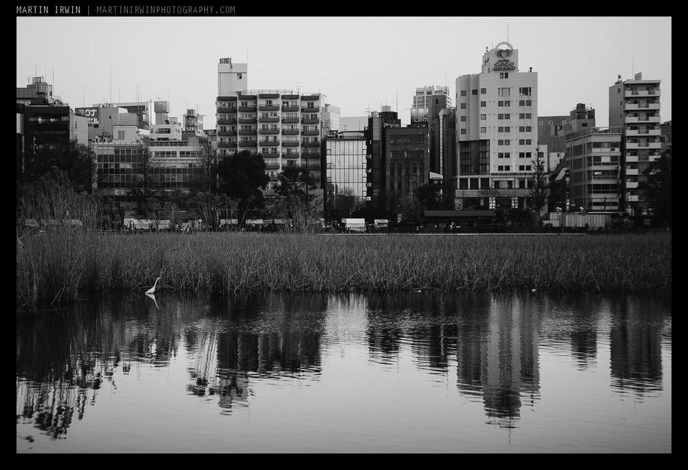 Ueno skyline