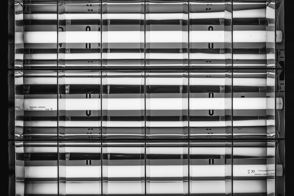 Leica Macro-Elmarit-R 60mm f/2.8| 1/250s f/5.6 ISO100 60mm