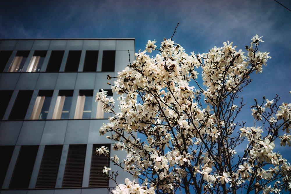 Spring has predictably sprung.