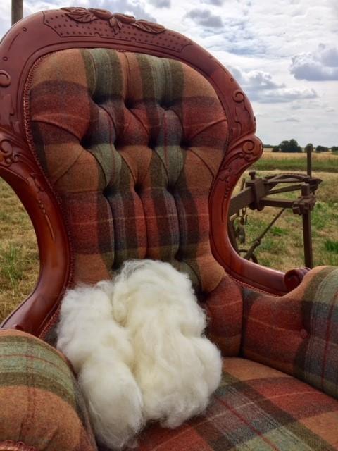 wool image 4.jpg