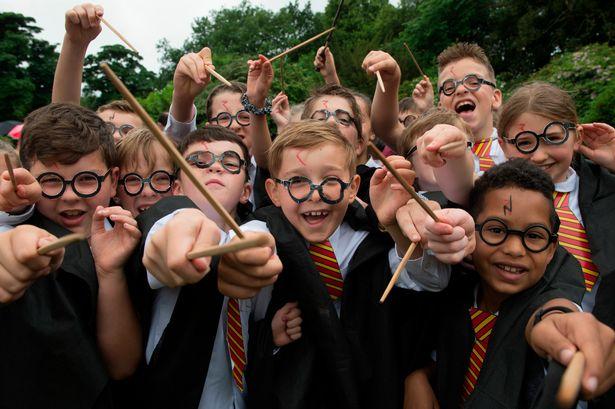 Harry-Potter-World-record.jpg